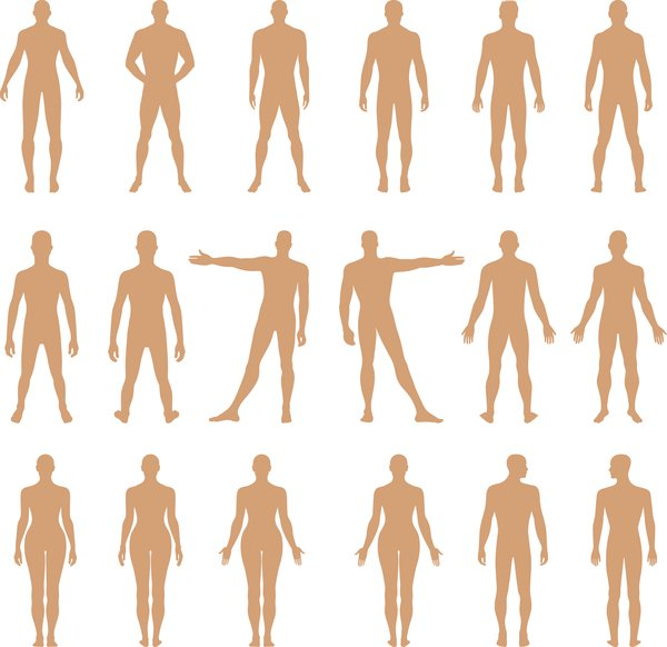 Full length front, back human silhouette vector illustration, isolated on white